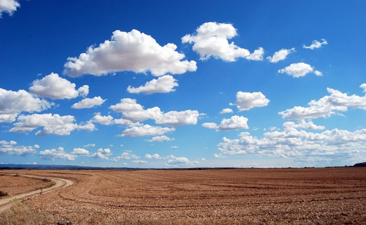 weekly-quote-open-field-horizon