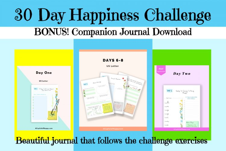 journalbonus2
